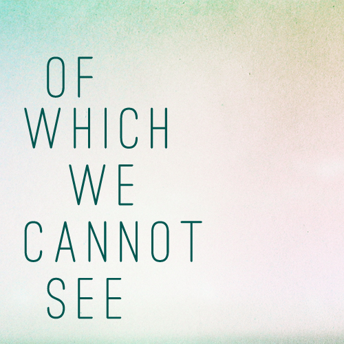 of which we cannot see